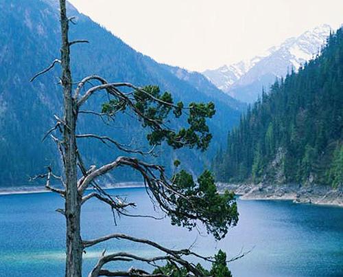 四川の自然の魅力を満喫する九寨溝・黄龍の旅 4日間