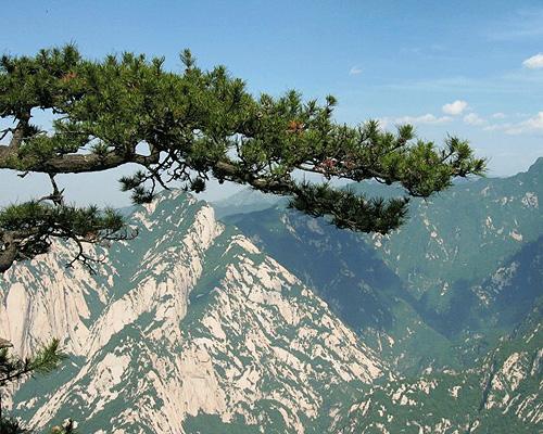 西安満喫と西岳華山4泊5日間の旅