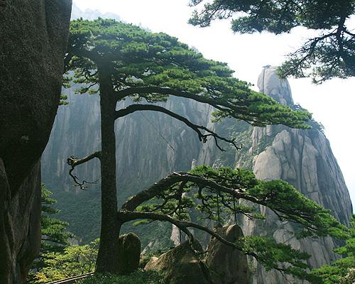 上海発、世界遺産黄山と安徽民居2泊3日間の旅