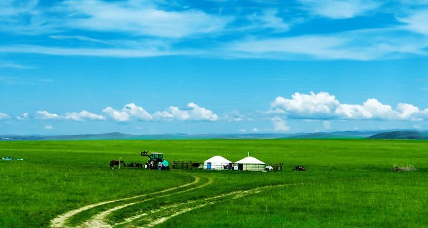 フルンボイル大草原を満喫 2泊3日の旅